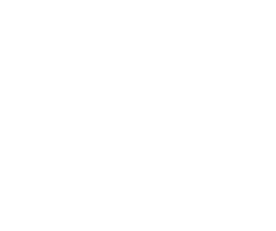 Logo for Illinois Connection